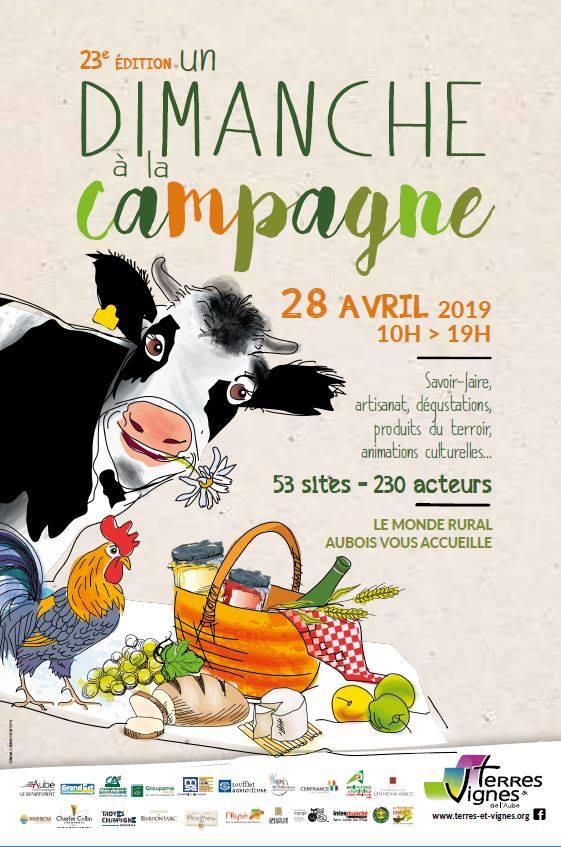 dimanche a la campagne champignonniere cussangy